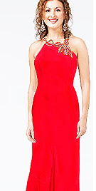 Designer Stone Studded Open Back Evening Gown